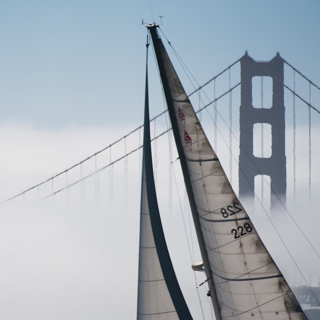 No better place to sail than San Francisco. And then hanging at Sam's in Tiburon. September 2009