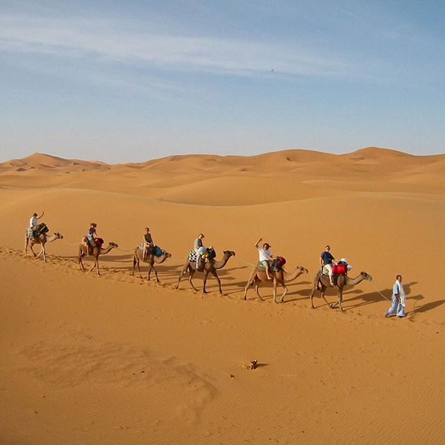 Camel Caravan. #tbt September 2012. There is nothing like being out in the dunes in the Sahara Desert.