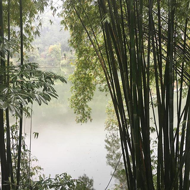 A little zen. Mt Emei, China.