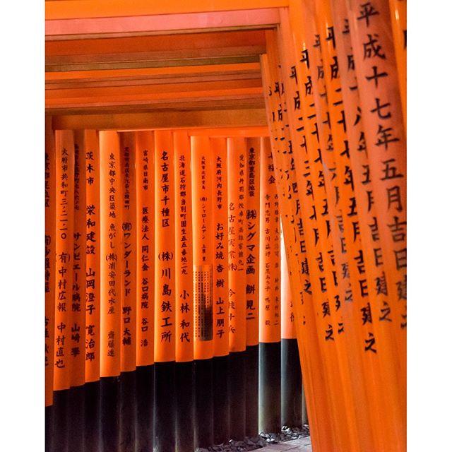 Fushimi Inari Shrine. Kyoto, Japan. If you visit Kyoto check out this shrine.