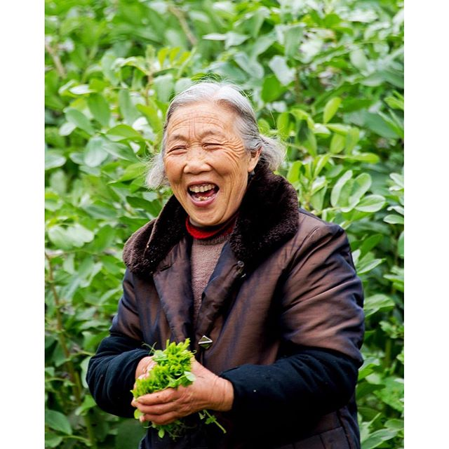 Was walking down a backroad in a suburb of Chengdu and came across this woman and her husband working in their field. I guess she was happy to see me and I was happy she was happy!
